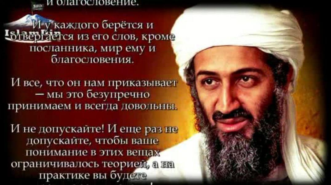 Наставление мусульманам от шейха Усамы бин Ладена