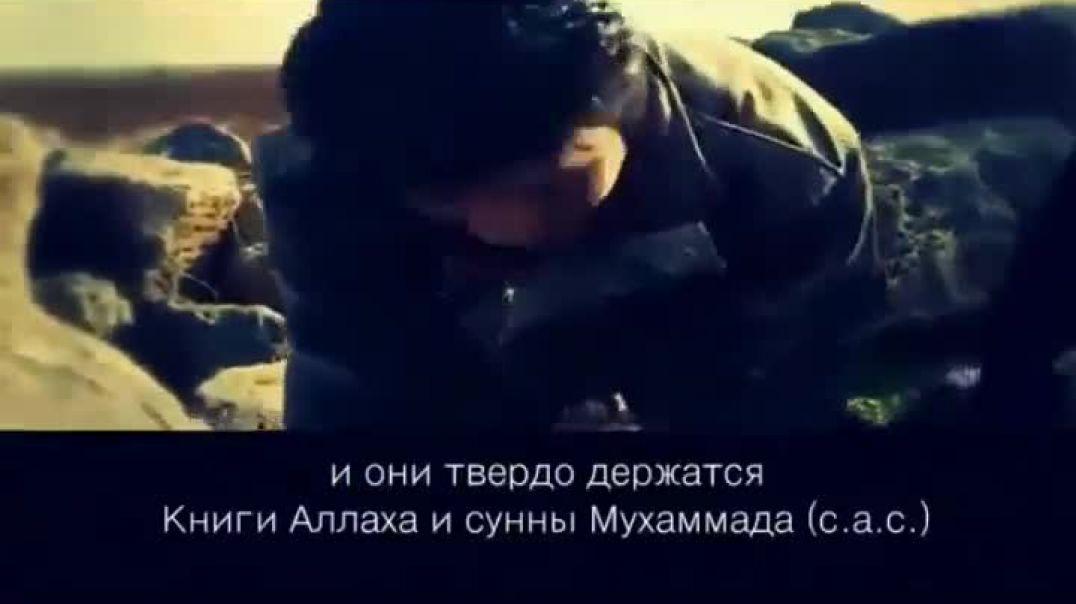 Аш-Шам (Сирия) зовет!