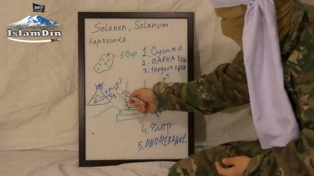 """Уроки Джихада для новобранцев: Урок 24. Производство яда """"Соланин""""."""