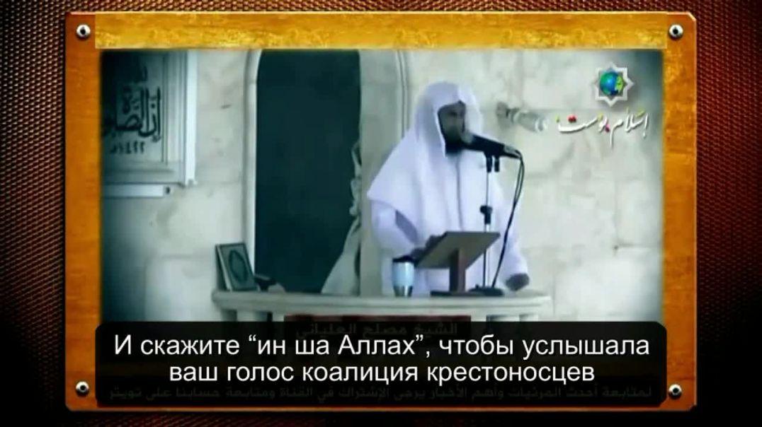 """Шейх Муслих 'Ильяни: """"Вы сегодня - надежда Уммы"""" Уммы, которая ждет вашей победы"""
