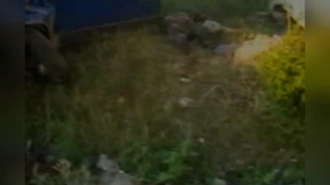 Место ликвидации кадыровских муртадов.  2005 год