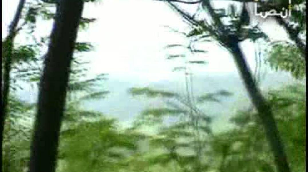Операция муджахидов около Ведено 2004 год