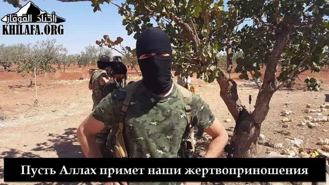 Аджнад аль-Кавказ. Поздравление муджахидов с Курбан байрамом