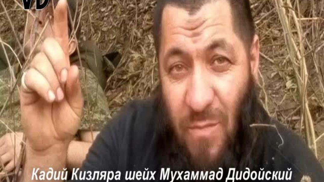 Вилаят Дагестан. Кадий Кизляра шейх Мухаммад Дидойский «Сплетники»