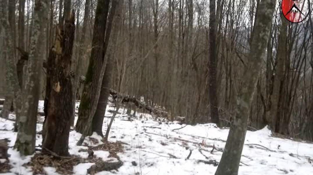 Вилаят Нохчийчоь. Бой в лесу 2012
